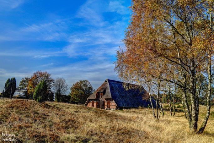 Es wird Herbst in der Timmerloher Heide