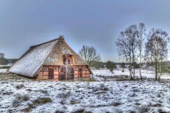 Ein Hauch von Winter in der Timmerloher Heide