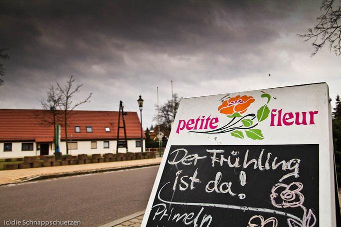 Elberadweg Pretzsch | Reiseblog by (c) die Schnappschützen