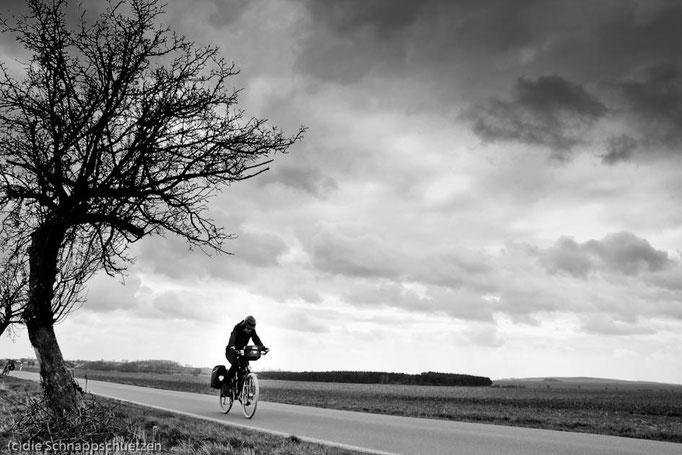 Elberadweg Meißen - Torgau | Reiseblog by (c) die Schnappschützen - Sturmböen im März: Frust auf offenem Felde
