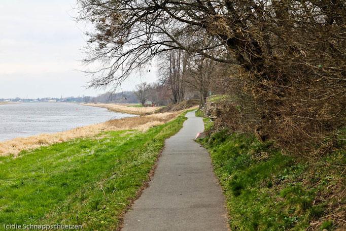 Elberadweg Meißen - Torgau | Reiseblog by (c) die Schnappschützen