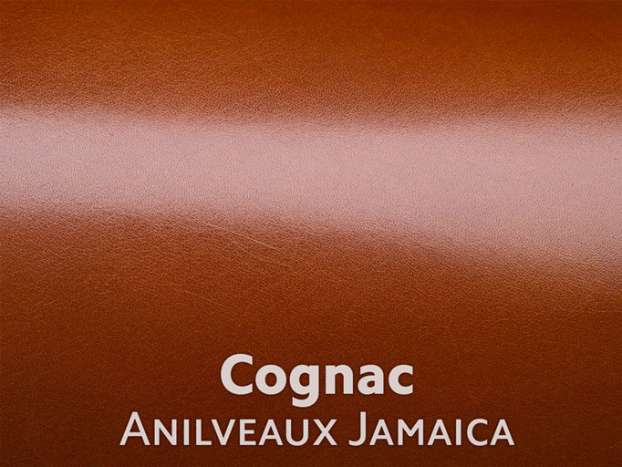 Boxcalf (Frenchcalf Anilin) Cognac farben