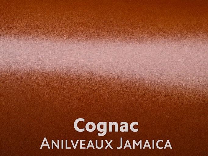 Boxcalf (Frenchcalf Anilin) Cognac farben