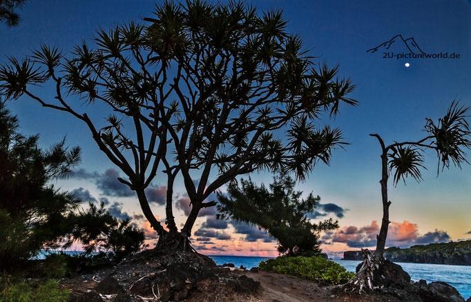 """Bild: Nord-Ost Kueste von Mau, """"der Mond ist aufgegangen"""""""