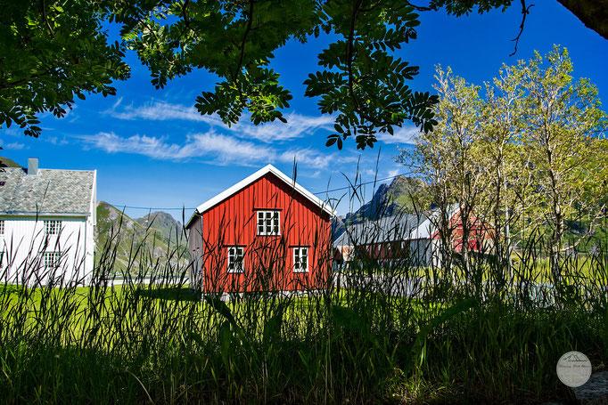 "Bild: kirk garden Flakstad; Flakstadoya, Lofoten Norway, ""Kirchgarten""; www.2u-pictureworld.de"