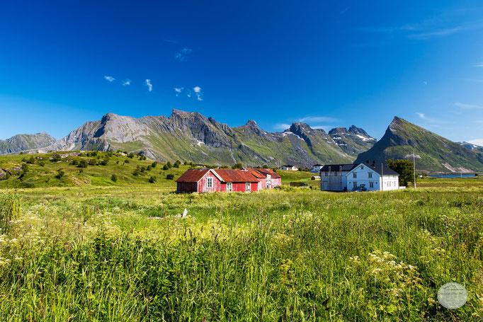 "Bild: meadow next to Flakstad, Flakstadoya Island, Norway; ""Wiesenträume""; www.2u-pictureworld.de"