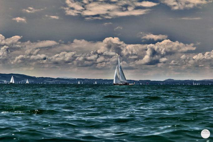 """Bild: Segelschiffe auf dem Bodensee in der Nähe von Wasserburg, """"white sails bright blue sky""""; www.2u-pictureworld.de"""