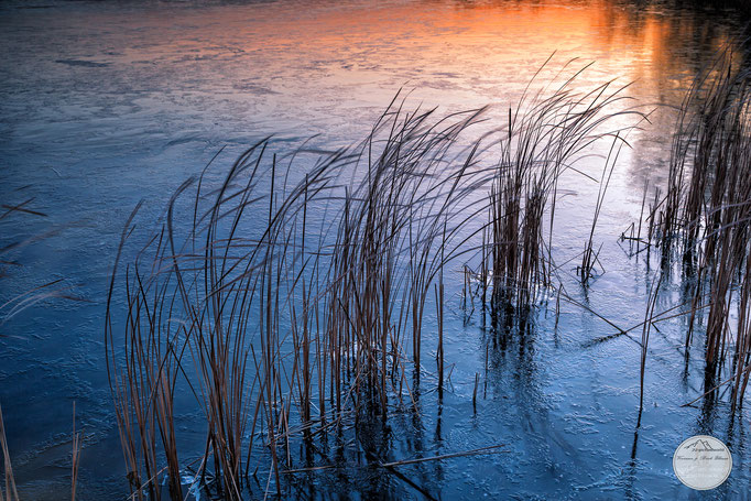 "Bild: Templiner See bei Herrmannswerder, Potsdam, ""winter evening at Templin(er) lake"", www.2u-pictureworld.de"