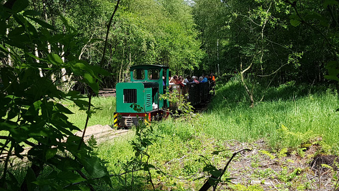 Förderverein Deutsche Feldbahn e.V