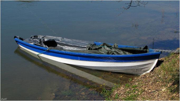 Une Barque au Lac de St Cassien en hiver !