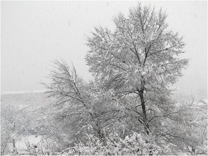 Jour de Neige ... ça arrive aussi à Montauroux !!!