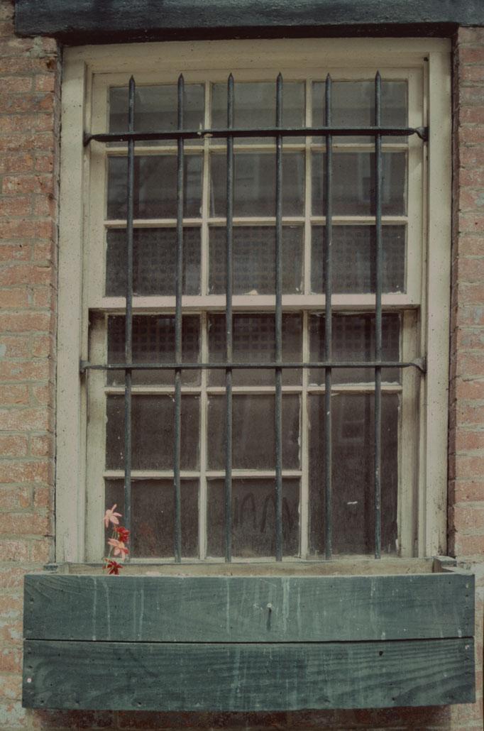 """Ausstellungs # 23Format100x75 cm Titel: """"Blumenfenster"""""""