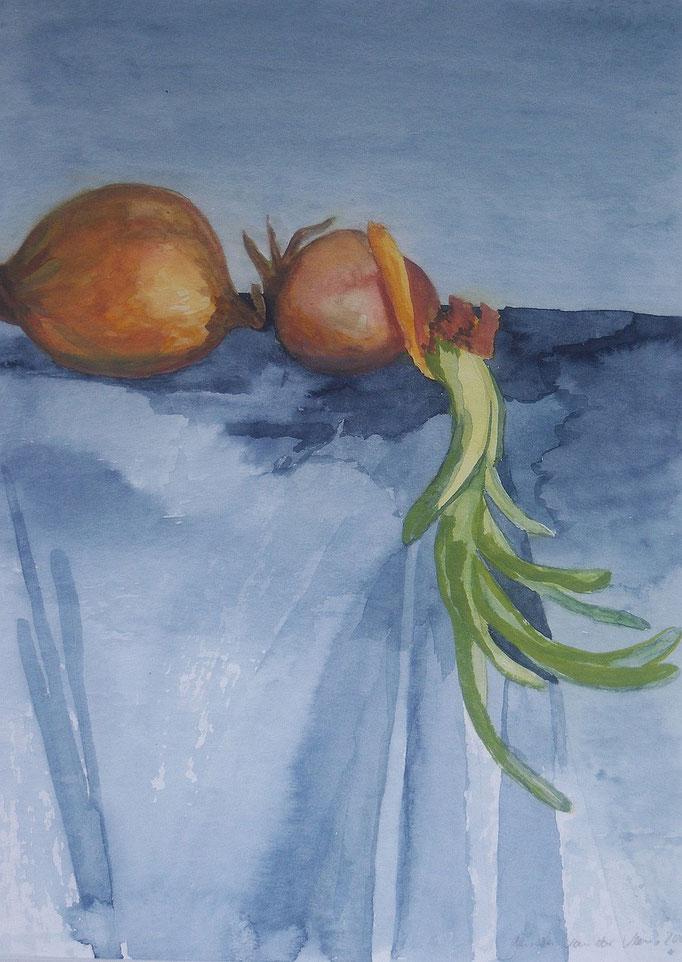 Zwiebeln, 2001, Aquarell auf Papier, 30 x 40 cm
