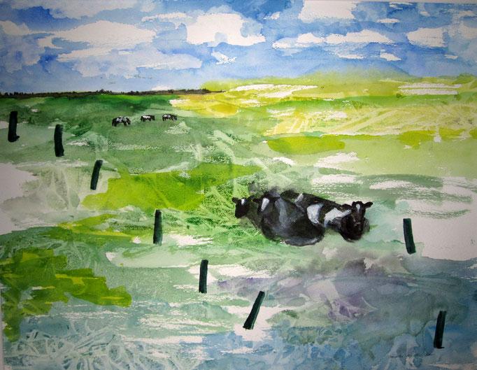 Kühe ruhend, 2019, Aquarell auf Papier, 56 x 43 cm