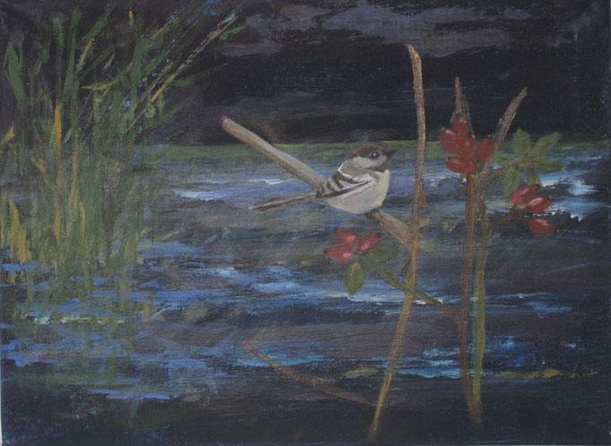Spatz im Rosenbusch, 2018, Acryl auf Leinwand, 30 x 40 cm