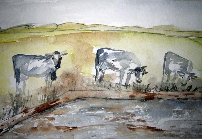 Kühe am Wasser, 2019, Aquarell mit Stiften auf Papier, 48 x 30 cm