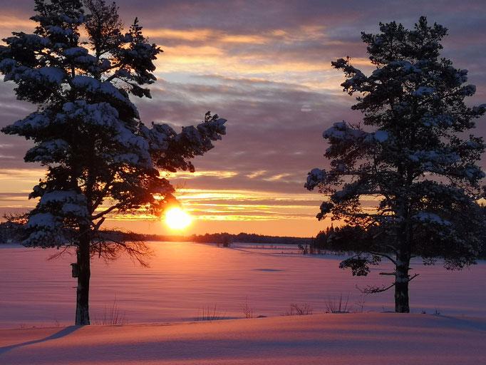 Lapplands Drag im Sonnenaufgang