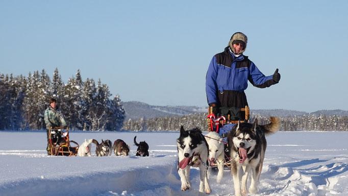 Schlittenhundetouren im wunderschönen Lappland