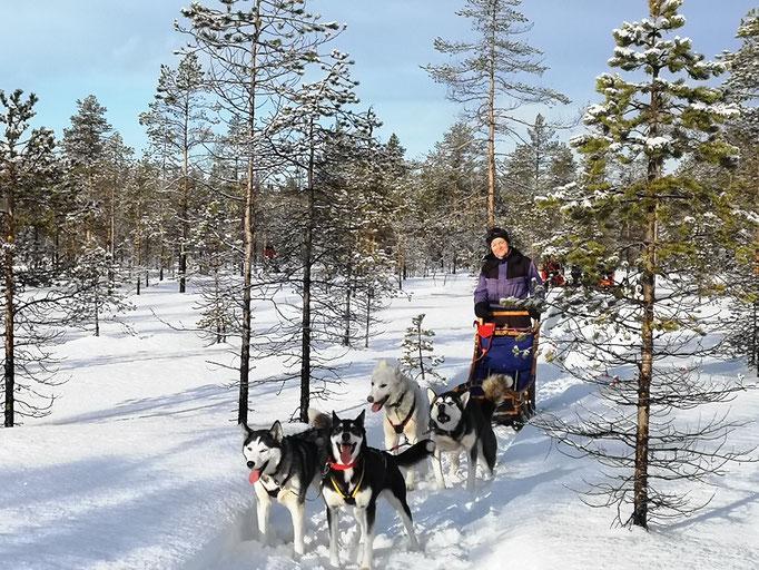Lapplands Landschaft ist unglaublich schön