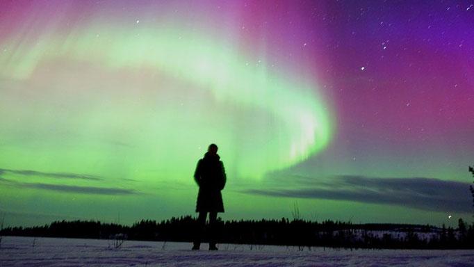 Polarlichter über der Lapplands Drag Huskyfarm