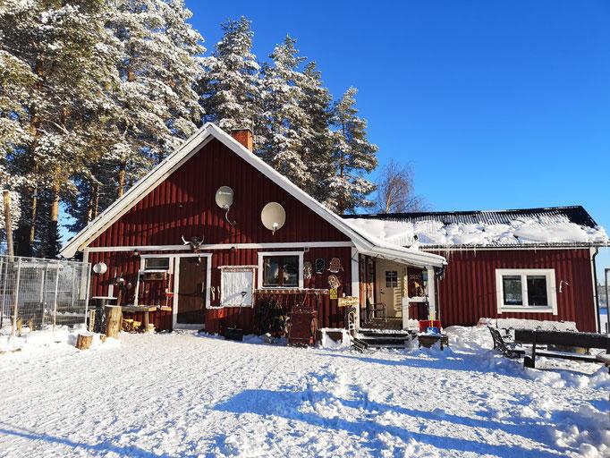 Lapplands drag Huskyfarm im Oktober