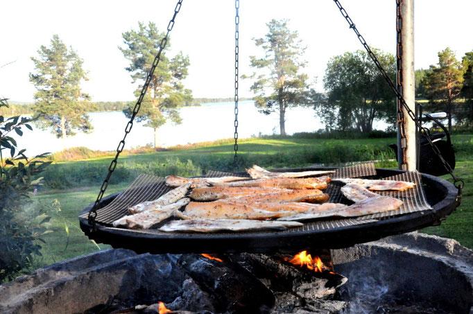 frischer Fisch vom Grill in Lappland
