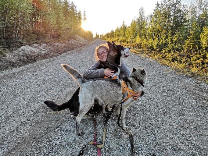 Spaziergänge mit den Huskys