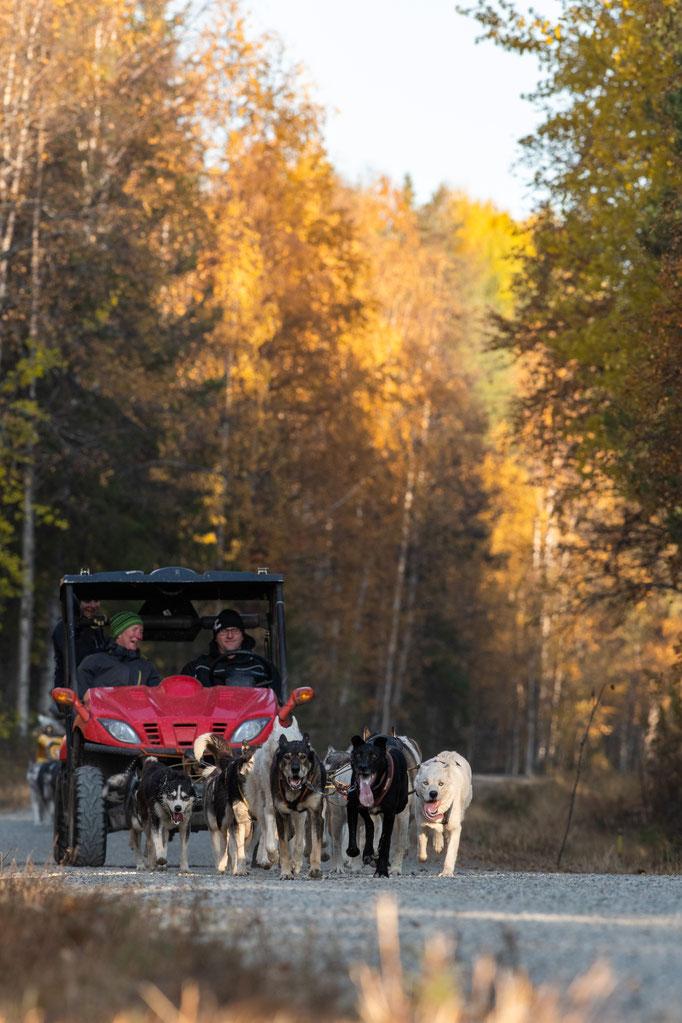 Mit den Quads durch Lapplands Weiten