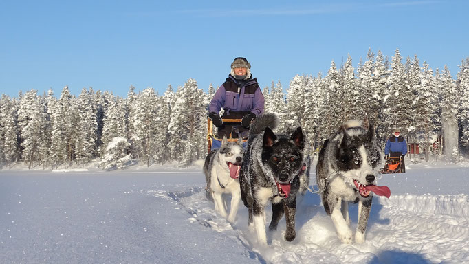 Winterurlaub in Lappland