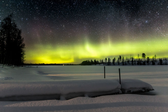 Polarlichter & Huskytouren