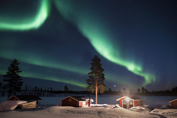 Polarlichter auf der Lapplandsdrag Huskyfarm