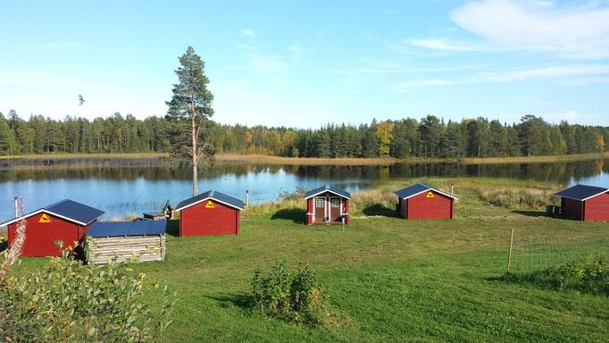 Unsere Gästehütten am Flussufer in Schweden