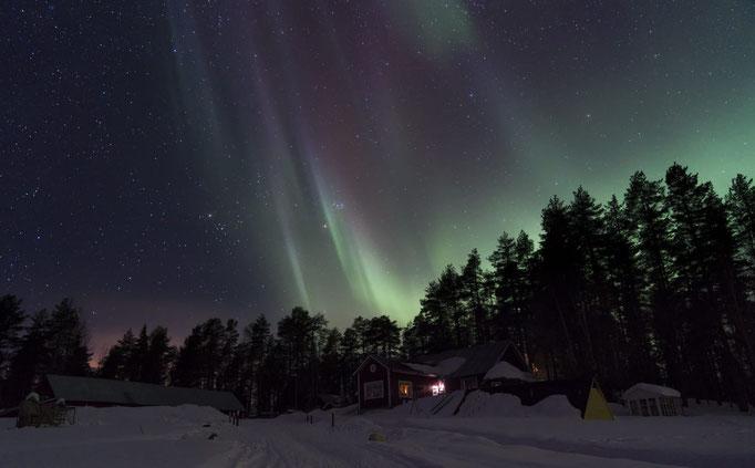Nordlichter bei uns in Lappland/Lapplandsdrag Huskyfarm