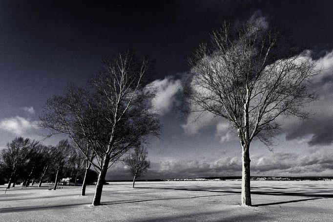 Winterstimmung, Infrarot-Look