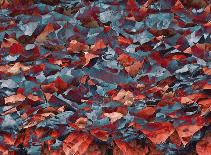 CHANGING SEASON (2004, MP0010) © Michael Pfenning