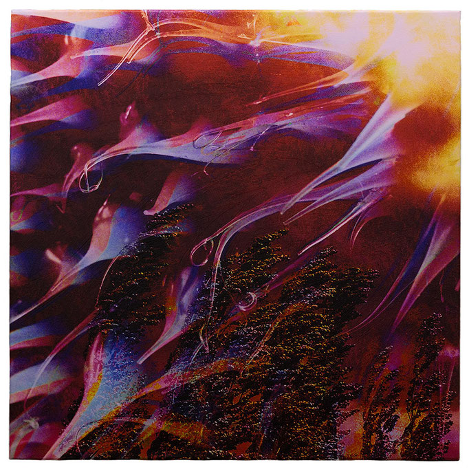 SKYSCREAMIN (2014, 1/8, 65x65cm, MP0055, Photographien, Inkjet-Pigmentdruck auf Leinwand, Acryl) © Michael Pfenning. Verkauft/Sold: 1 von 8