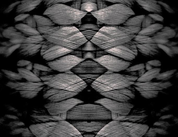 EVOLUTION (2009, MP0092) © Michael Pfenning