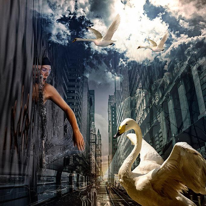Wings © kaleidoscope king 2015