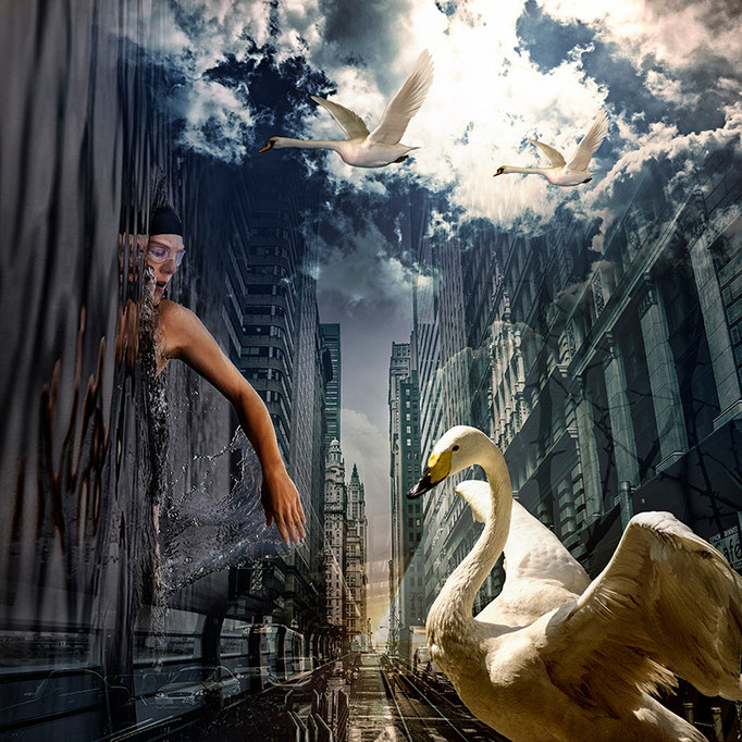 Wings © kaleidoscope king 2016