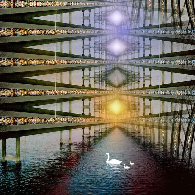 Swan © kaleidoscope king