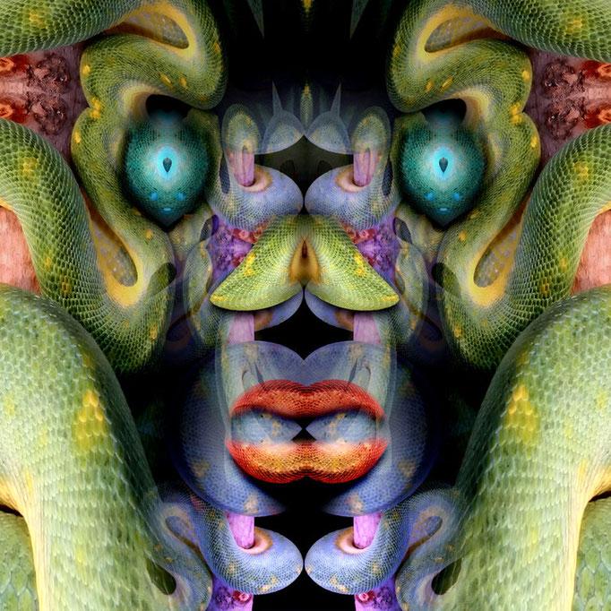 Snake face © kaleidoscope king