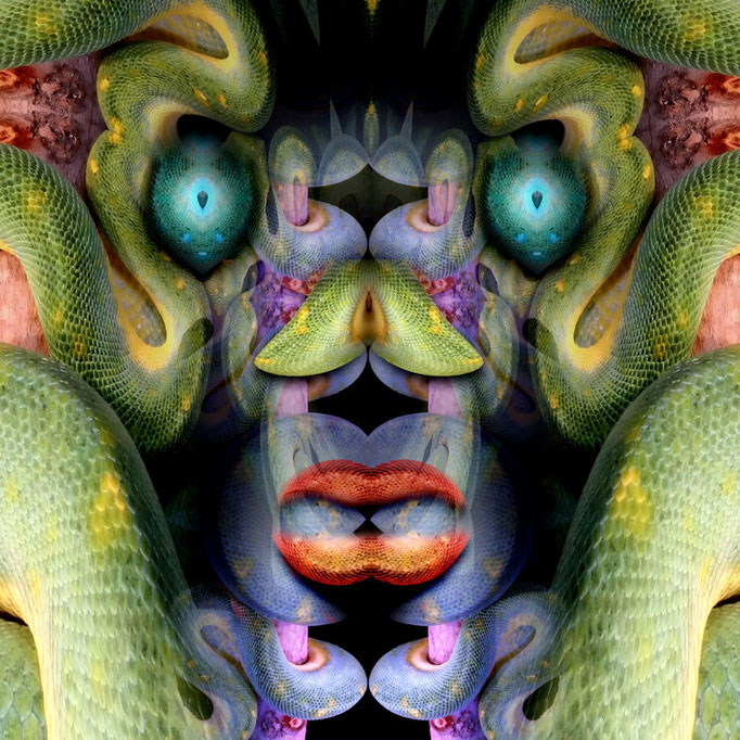 Snake face © kaleidoscope king
