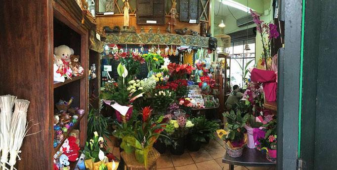 La Floristería La Pagoda  está muy bien surtida con flores cortadas,plantas,peluches,regalos originales,bisutería,inciensos y mucho mas.