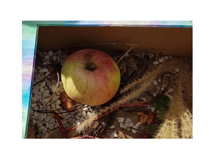 Steingeister in Apfelkiste von Pauli