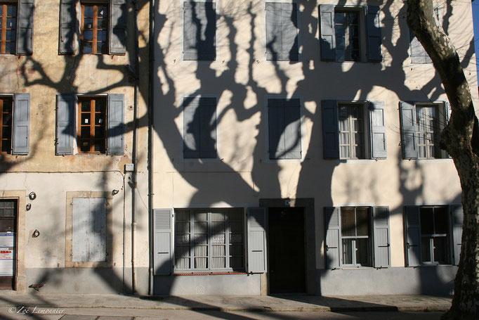 Cours Gambetta à Cotignac
