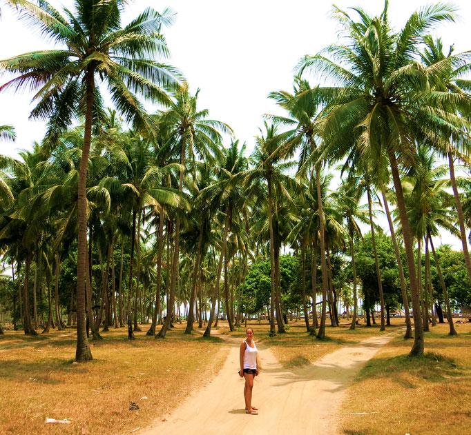Auf Lombok
