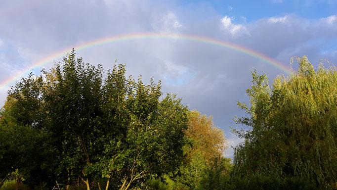14.08. Ein ganzer Regenbogen über Maison Libellule