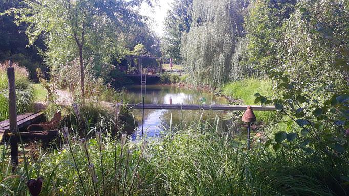 14.08. Blick über den Teich