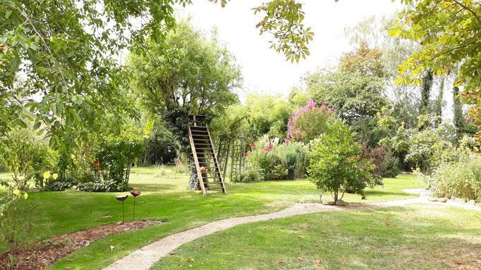 30.08. Blick in den Garten