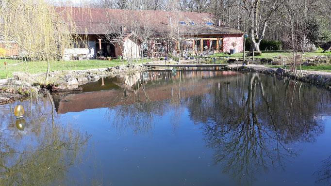 29.03. Der Teich schön voll